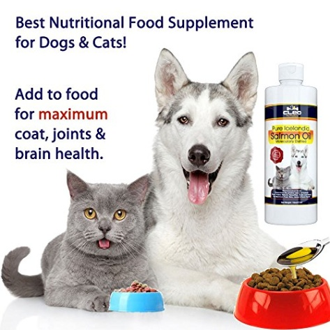 CBD oil for Cats: what you need to know Phytocannabinoids for joint pain, nausea and anxiety Hemp industry's statement about phytocannabinoid oil: Industrial hemp comes from a .