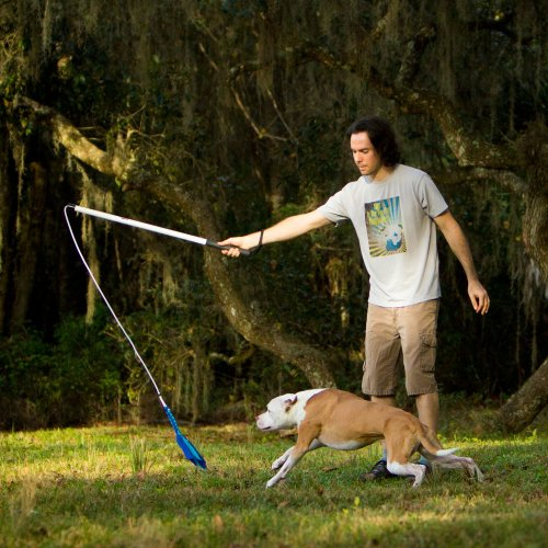 Pole Toy For Dogs