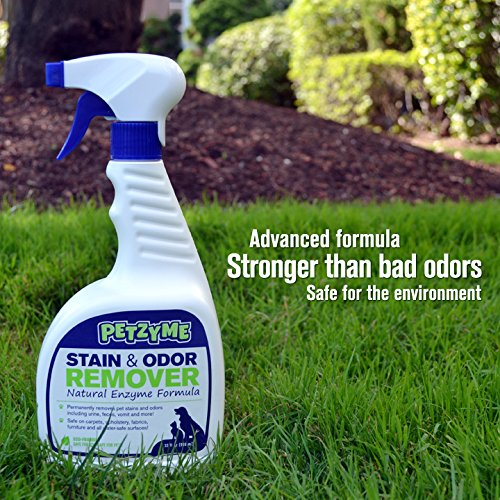 Petzyme Pet Stain Remover & Odor Eliminator, Enzyme ...