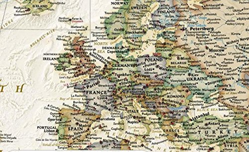 Mural world map map type executive for Executive world map wall mural