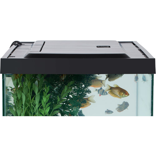 aqua culture led aquarium hood for 20 55 gallon aquariums