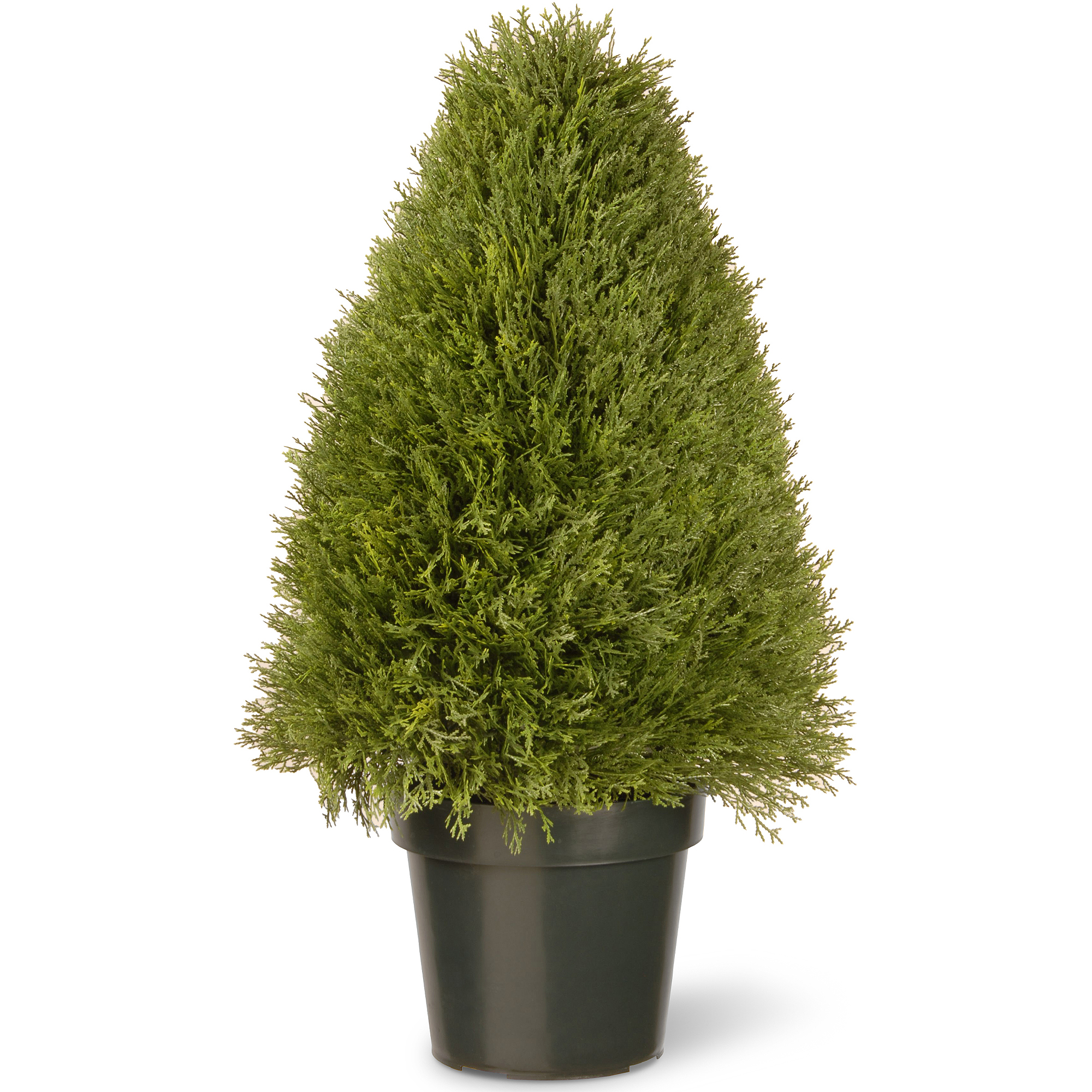 National Tree 30 Upright Juniper With Green Pot 729083600944 Ebay